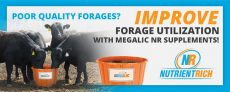 Improve Forage Utilization